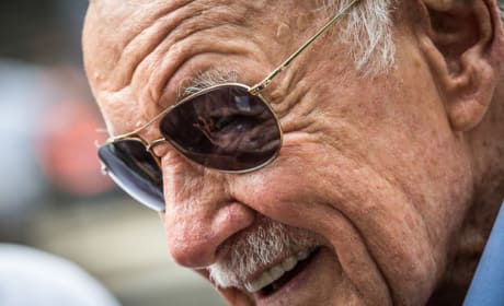 The Amazing Spider-Man 2 Stan Lee