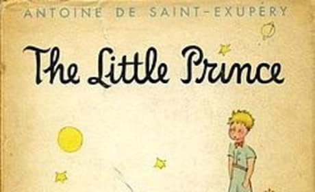 The Little Prince Voice Cast Announced: James Franco, Rachel McAdams, and More!
