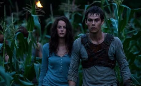 The Maze Runner Kaya Scodelario Dylan O'Brien
