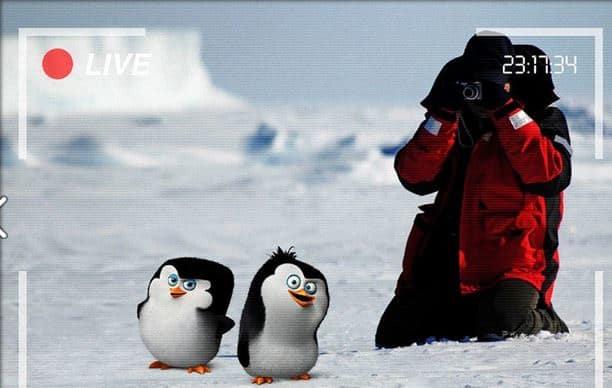 The Penguins of Madagascar Werner Herzog