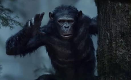 Dawn of the Planet of the Apes TV Spot: Prepare for War