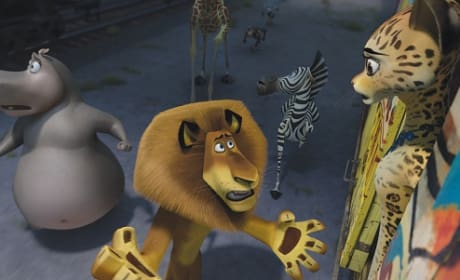 Madagascar 3: Ben Stiller and Chris Rock