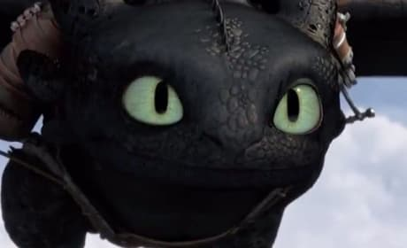 How to Train Your Dragon 2 Toothless