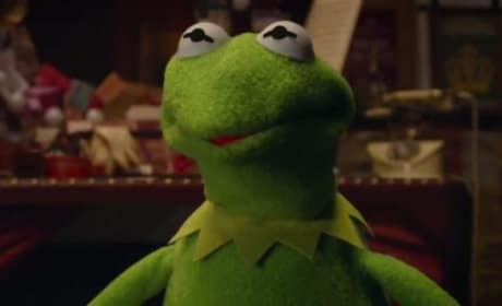 Muppets Most Wanted Star Kermit