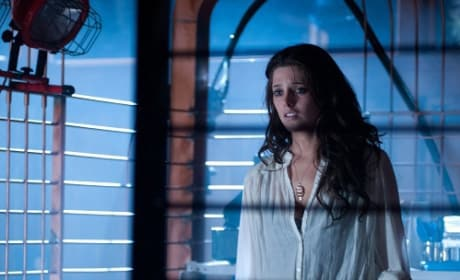 Ashley Greene on The Apparition, Life After Breaking Dawn