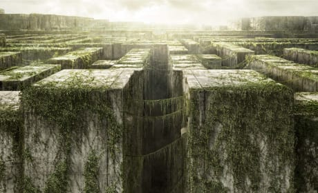 The Maze Runner Poster: Dylan O'Brien Graduates From Teen Wolf