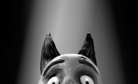 Frankenweenie Trailer: Lightning! And Boom! And Sssssss!