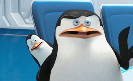 Penguins of Madagascar Kowalski