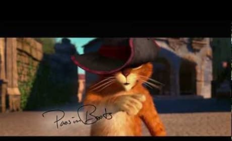 Puss in Boots Viral Video
