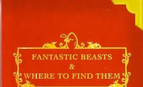 Fantastic Beasts and Where To Find Them: Trilogy Release Dates Revealed