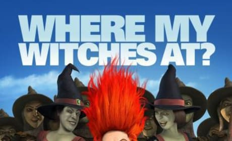 Shrek Forever After Where My Witches At? Poster
