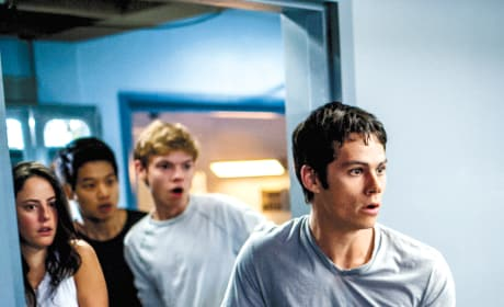 Dylan O'Brien Maze Runner: The Scorch Trials