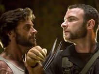 Wolverine and Sabretooth