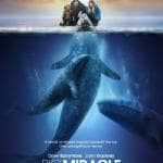 Big Miracle Movie Poster