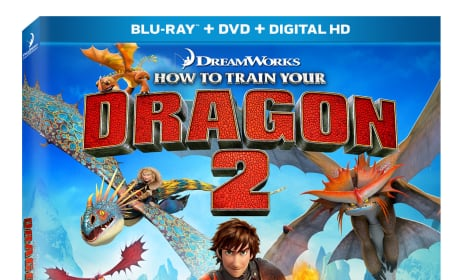 How to Train Your Dragon 2 DVD Release Date: Revealed!