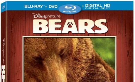 Bears DVD Review: Beary, Beary Good!