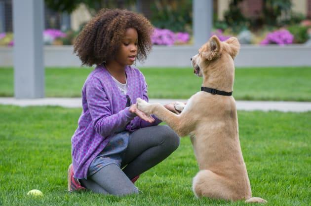 Annie & Sandy