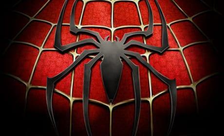 Sam Raimi Remains Hush on Spider-Man 4 Villains