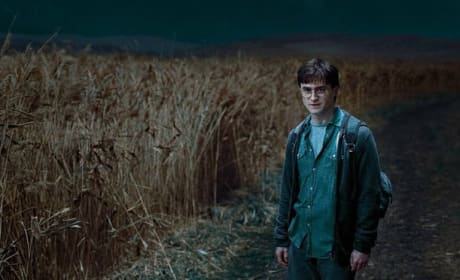 Five More Harry Potter and the Deathly Hallows Stills Released!