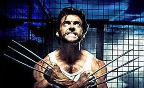 Wolverine Spoilers: Photo, Plot Synopsis