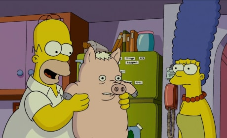 The Simpsons Movie Sequel: Fox Wants It, Do Creators?