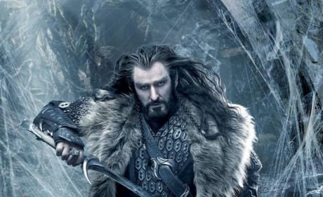 The Hobbit: The Desolation of Smaug Oakenshield Poster