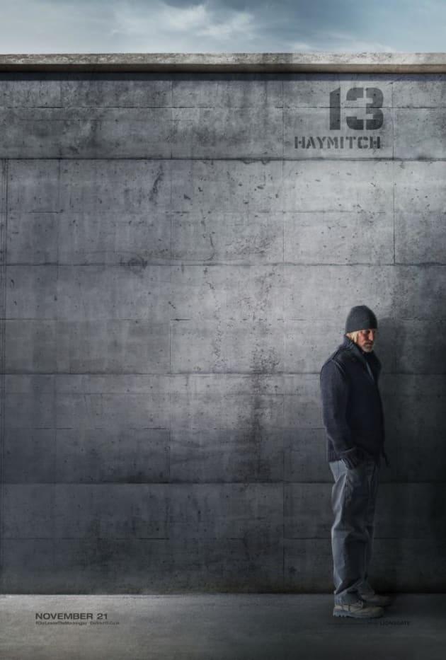 Mockingjay Part 1 Woody Harrelson Poster