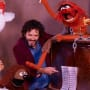 Bret McKenzie and The Muppets