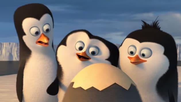 We Start Where Their Journey Starts, Antarctica