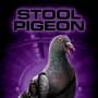 Cats and Dogs Stool Pigeon Poster