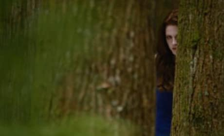 Breaking Dawn Part 2 Trailer: Seeing Red