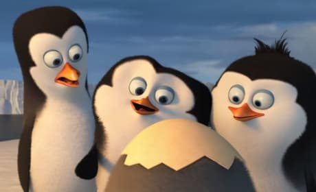 The Penguins of Madagascar Opening Scene