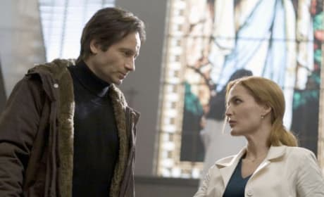 The X-Files: I Want to Believe Stars Speak on Reprising Roles