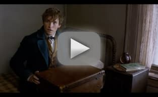 Fantastic Beasts and Where to Find Them: Announcement Trailer!!