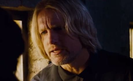 Woody Harrelson Haymitch Catching Fire