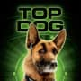Cats and Dogs Top Dog Poster