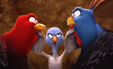 Free Birds: Talking Turkey with Woody Harrelson, Owen Wilson & Amy Poehler