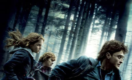 Harry Potter and the Deathly Hallows - Part 1 on DVD April 15