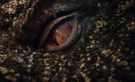 The Hobbit: The Desolation of Smaug Dragon