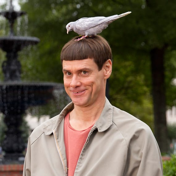 Jim Carrey in Dumb and Dumber To