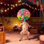 Chris Rock in Madagascar 3