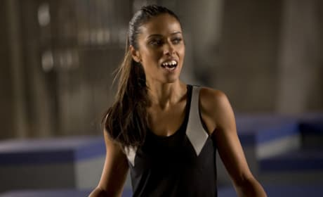 The Hunger Games Catching Fire Meta Golding