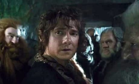 The Hobbit: The Desolation of Smaug Bilbo