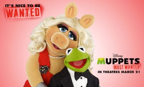 Kermit and Miss Piggy Valentine's Day Card