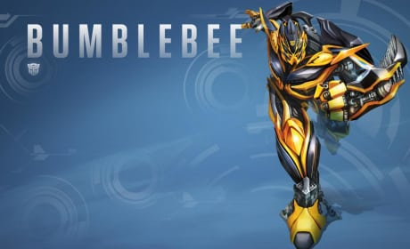 Transformers Age of Extinction Bumblebee Toy