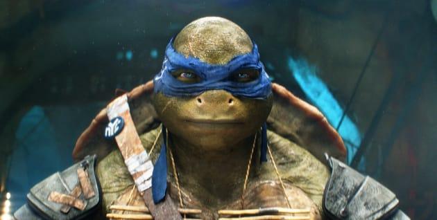 Teenage Mutant Ninja Turtles Movie Still