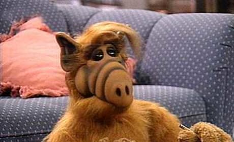 ALF Movie in Development: Was 4 Seasons in the 1980s Enough?