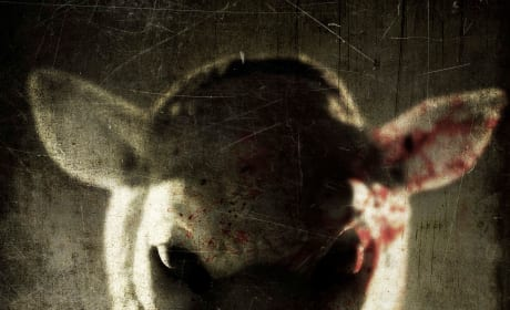 You're Next Exclusive Giveaway: Win Scary Posters & DVD Horror Pack!