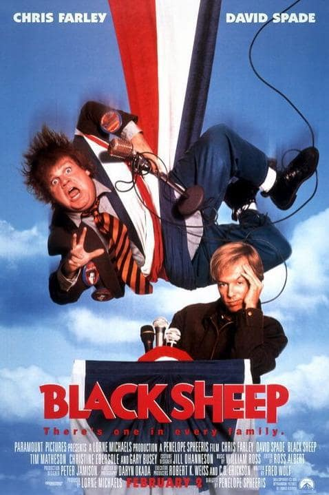 Black Sheep Picture