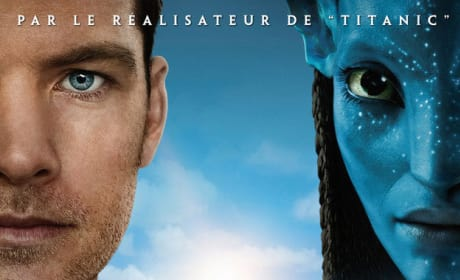 French Avatar Poster Revealed!